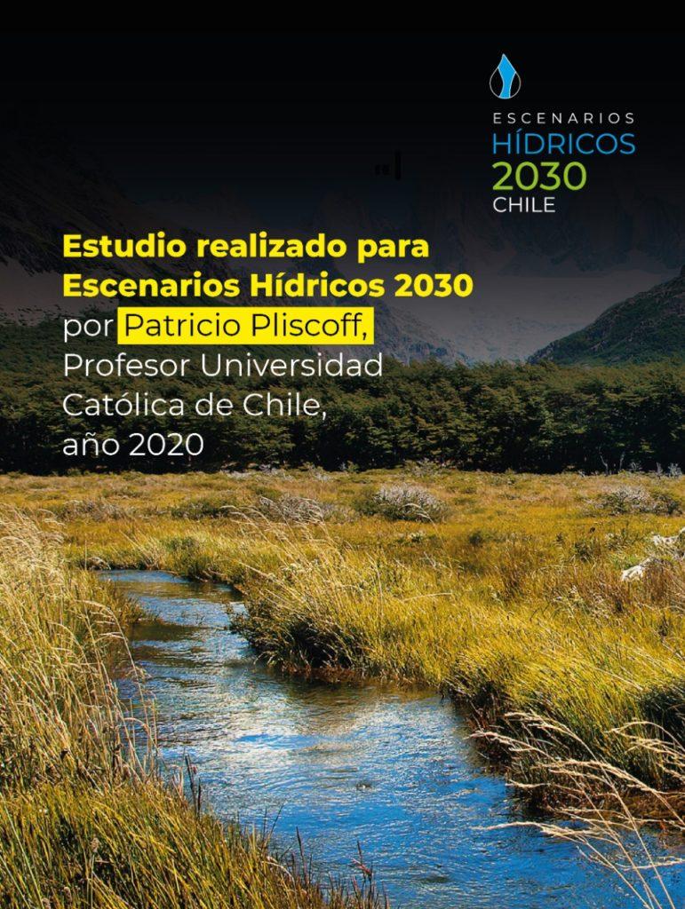 Portada de informe Pliscoff